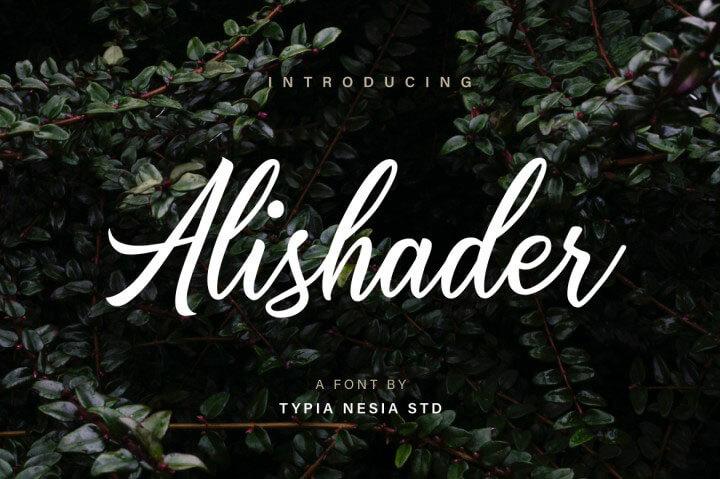 alishader腳本的字體