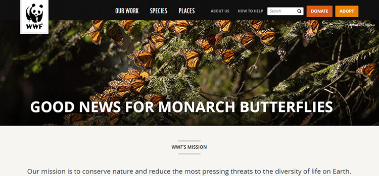 World Wildlife Fund call to action examples